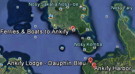 ankify